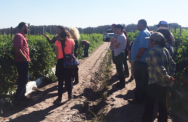 Rabbi leaders from T'ruah: The Rabbinic Call for Human Rights visit Fair Food Program farm in Florida