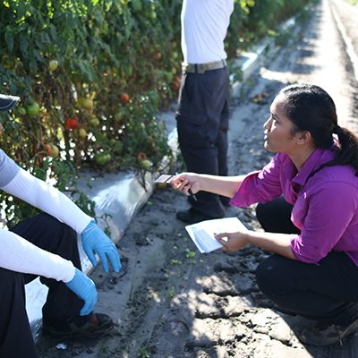 Auditor from the Fair Food Standards Council, the third-party monitoring body tasked with ensuring the implementation of hte Fair Food Program, conducting an interview with workers on a tomato farm in Florida