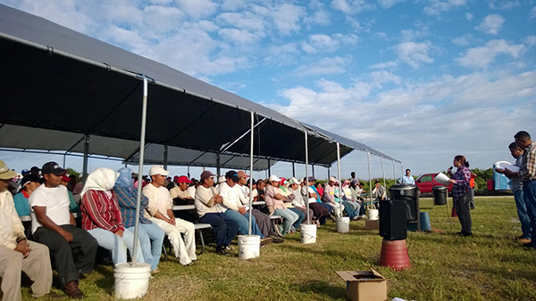 The CIW education team meets with workers at an Immokalee area farm.
