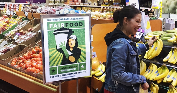 Stop & Shop customer in Teaneck, NJ browsing produce alongside brand-new Fair Food Program point of sale display, which are beginning to appear across the Northeast.