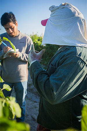 A farmworker discussing conditions on the farm with an auditor in the Fair Food Program