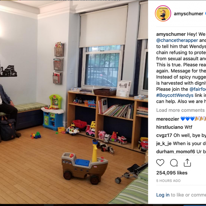 On Sunday, comedian, actor and advocate Amy Schumer took to Instagram to blast Wendy's –and reveal the sex of her soon-to-be-born child, simlutaneously, garnering hundreds of thousands of responses within hours.